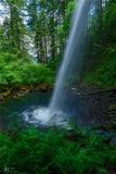 Columbia Gorge, Oregon, greens, falls, spring, greenery, ponytail falls