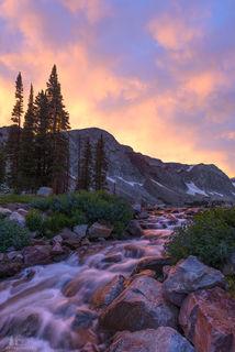 Alpine Splendor print