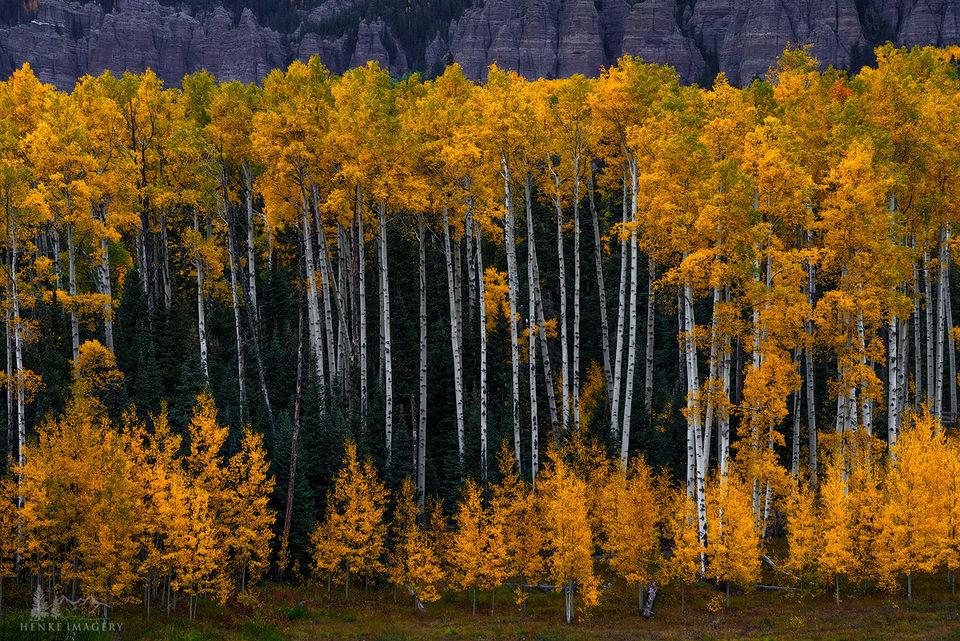 Silver Jack Reservoir, Colorado,aspen, generations, glow