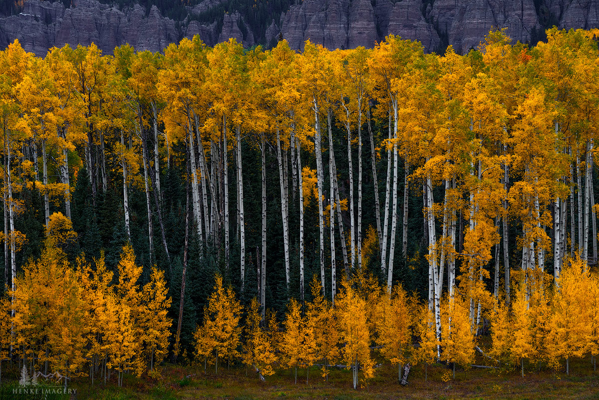 Silver Jack Reservoir, Colorado,aspen, generations, glow, photo