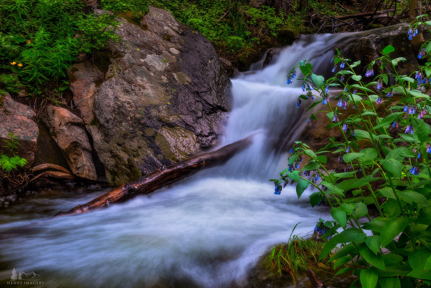 A peaceful view of a small cascading stream in Rocky Mountain National Park, Colorado.
